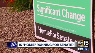 What's the story behind 'Vote for Homie' ?