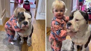 Little girl loves hugging her gentle bulldog friend