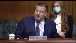Ted Cruz Goes on EPIC RANT Against Gun-Grabbing Senators