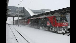 JRF freight train passing Shin-Hakodate