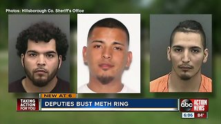 17 people arrested in months long Plant City drug investigation