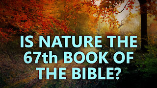 Is nature really the 67th book of the Bible?
