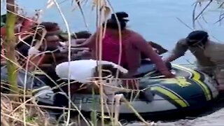 Video Shows Massive Group Of Migrants Being Guided Across Texas River