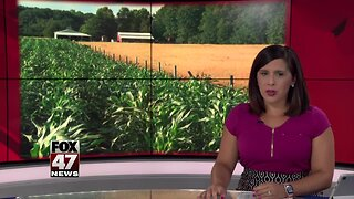 Farmers discuss economic impact of heavy rain with Michigan lawmakers