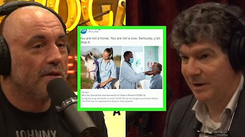 Joe Rogan: The Media's Misinformation On Ivermectin And Fauci Funding The Wuhan Lab