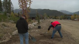 Grand Lake undergoes mini-makeover as students, 'guardians of wilderness' plant trees in burn scar