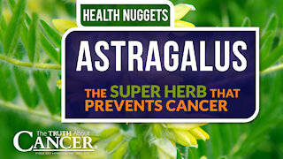 The Truth About Cancer Presents: Health Nuggets - Astragalus: The Super Herb That Prevents Cancer