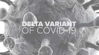 Delta variant raising concerns, but how may fully vaccinated people get it?