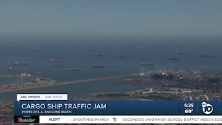 Cargo ships sit waiting outside of Los Angeles, Long Beach ports