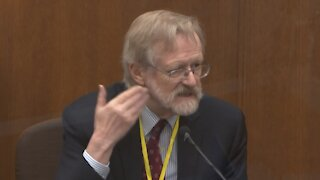 Court TV: Chauvin Trial Jury Hears From Respiratory Expert