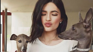 Best Celebrity Puppies! | National Dog Day!