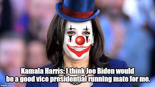 Kamala Harris: Joe Biden can be my vice president