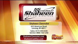 Shaheen - 6/8/20