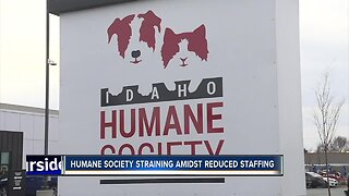 Idaho Humane Society asking for donations for veterinary medical center