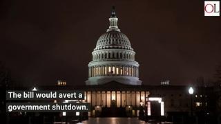 House Passes Massive $1.3 Trillion Spending Bill