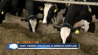 Declining milk prices puts Wisconsin farmers in a pinch