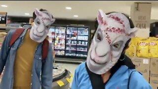 BAAAAA! Mask Sheep in a Supermarket