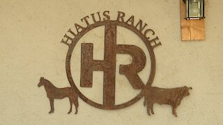Hiatus Ranch Auction
