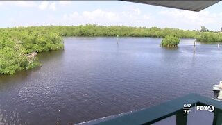 Bonita Springs and FGCU teaming up to appoint new city water steward