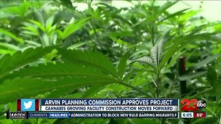 Arvin Planning Commission approves cannibis project