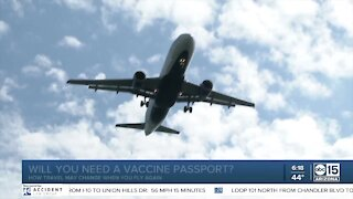 Will you need a vaccine passport to travel?