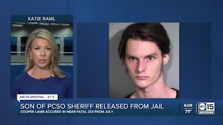 Son of PCSO Sheriff Lamb released from jail