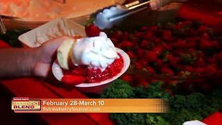 Florida Strawberry Festival | Morning Blend