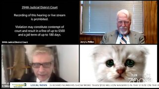 TRENDING | Texas lawyer shows up as cat on Zoom hearing