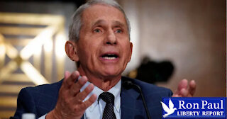 Fauci In The Hot Seat: Did He Lie To Congress?