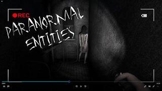 Paranormal Entities: Exploring a Haunted Asylum Indie Horror Game