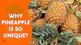 Top 4 Impressive Health Benefits Of Pineapple
