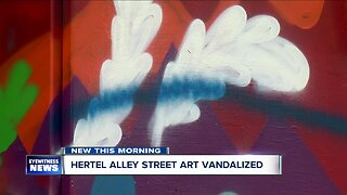 Hertel Avenue street murals vandalized