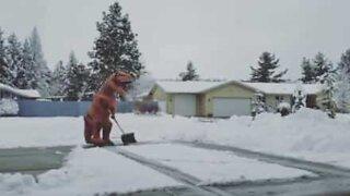 T-Rex shovels snow like a pro