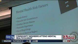 Community members attend mental health summit