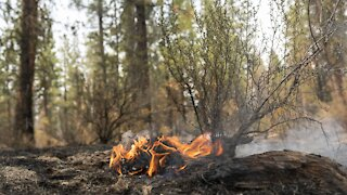 Massive Fires Gripping The West