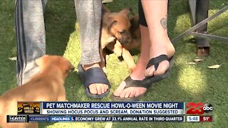 Pet Matchmaker Rescue Howl-O-Ween movie night