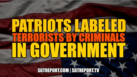 U.S. PATRIOTS NOW BEING LABELED 'TERRORISTS' BY CRIMINALS IN GOVERNMENT
