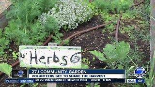 27J School District has a community garden