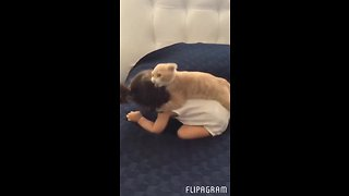 Kitten loves to play with baby girl