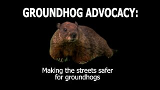 Advocacy for the Awareness of the Safety of Groundhogs