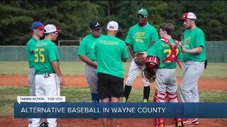 Alternative Baseball in Wayne County