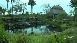 Local attraction temporarily closes after a staff member tests positive for coronavirus