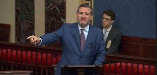 Ted Cruz gives compelling speech regarding mask mandate