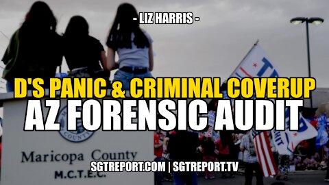 D'S PANIC & CRIMINAL COVERUP: AZ FORENSIC AUDIT -- LIZ HARRIS