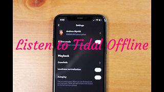 Best Way to Listen to Tidal Offline