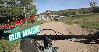 Killington Mountain Bike Park Blue Magic