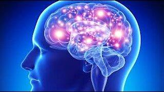 Patriot Health Report 02-27-21 Brain Health!