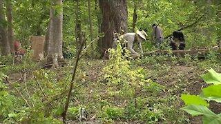 Volunteer group restores Lower Shaker Lake park's natural habitat