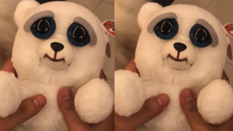 Seemingly Innocent Plush Toy Ends Up Being Absolutely Terrifying