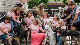Olathe native grows dog service business through Instagram